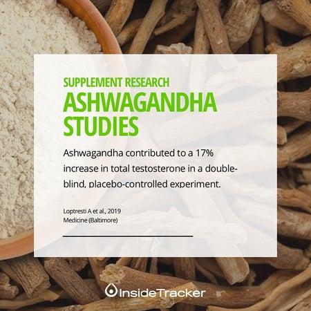 Ashwagandha can increase testosterone levels