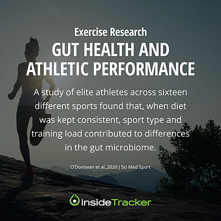 Gut Health ans Athletic Performance 1_opt