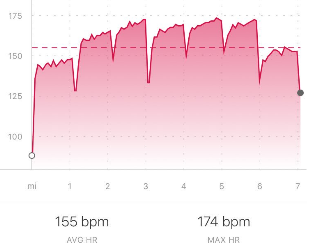 Heart_Rate_Jonathan-248167-edited.png