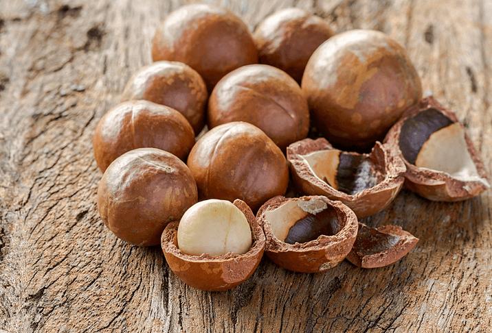 Macadamia_Nut