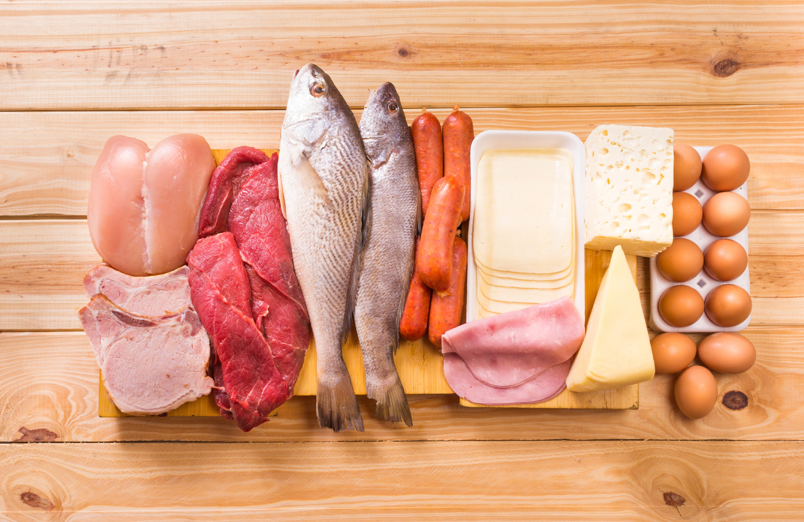 Meat-protein-fish.jpg