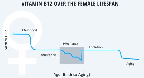 B12 levels change throughout a woman's lifespan