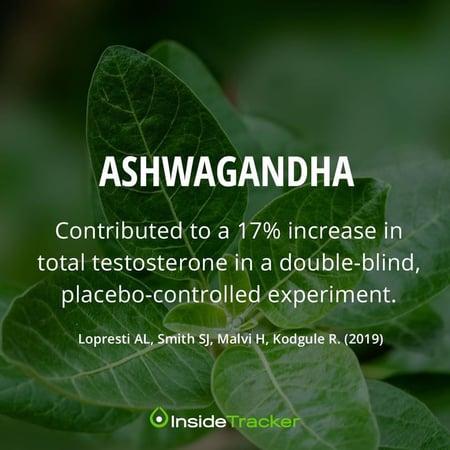 Ashwagandha can lower stress levels