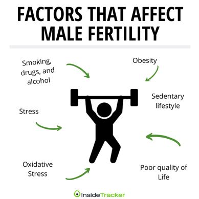 causes of male fertillity