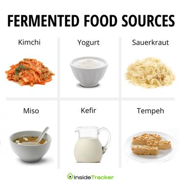 fermented foods immunity