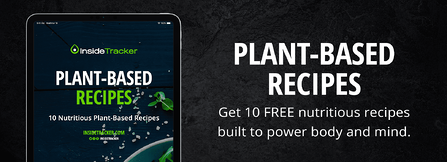 plant based recipes ebook banner