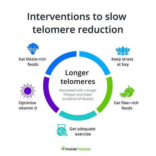 telemore-reduction