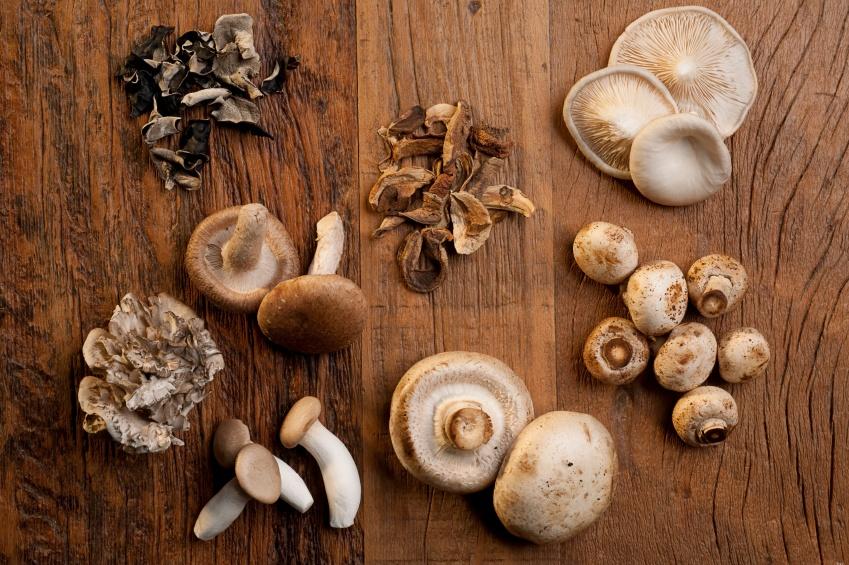 Edible_mushrooms