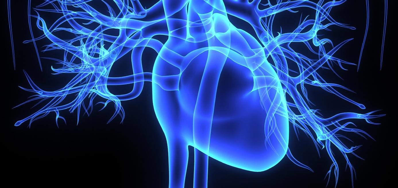 Heart_Rate_Variability_InsideTracker