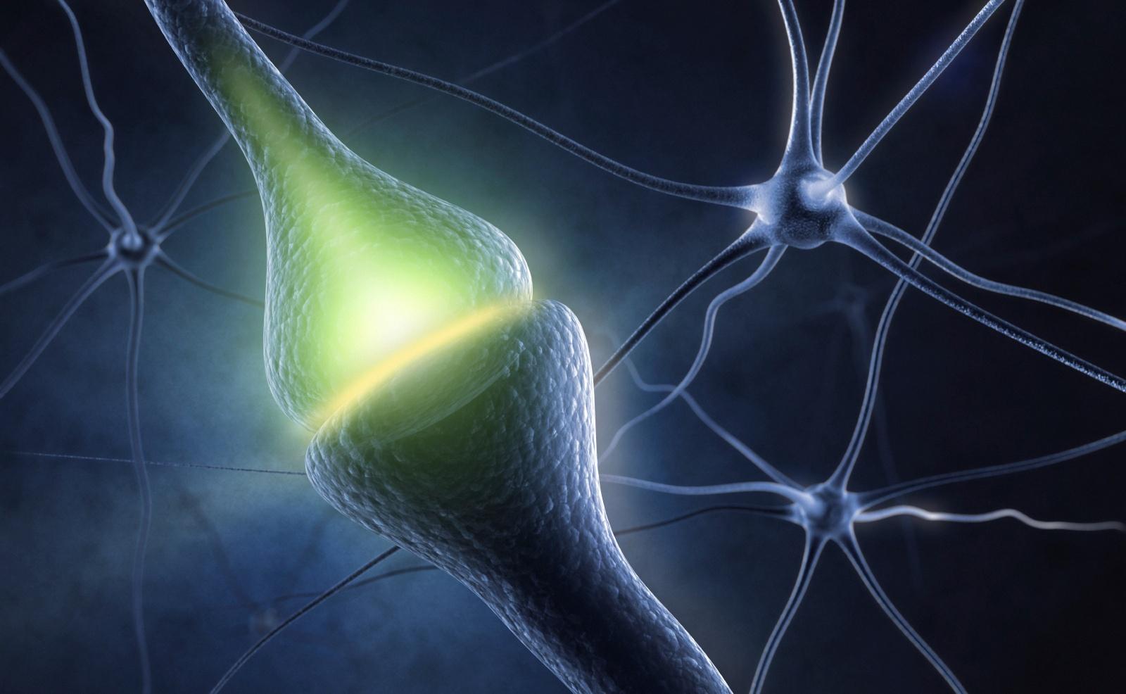 Nerve_Glucose_Cognition