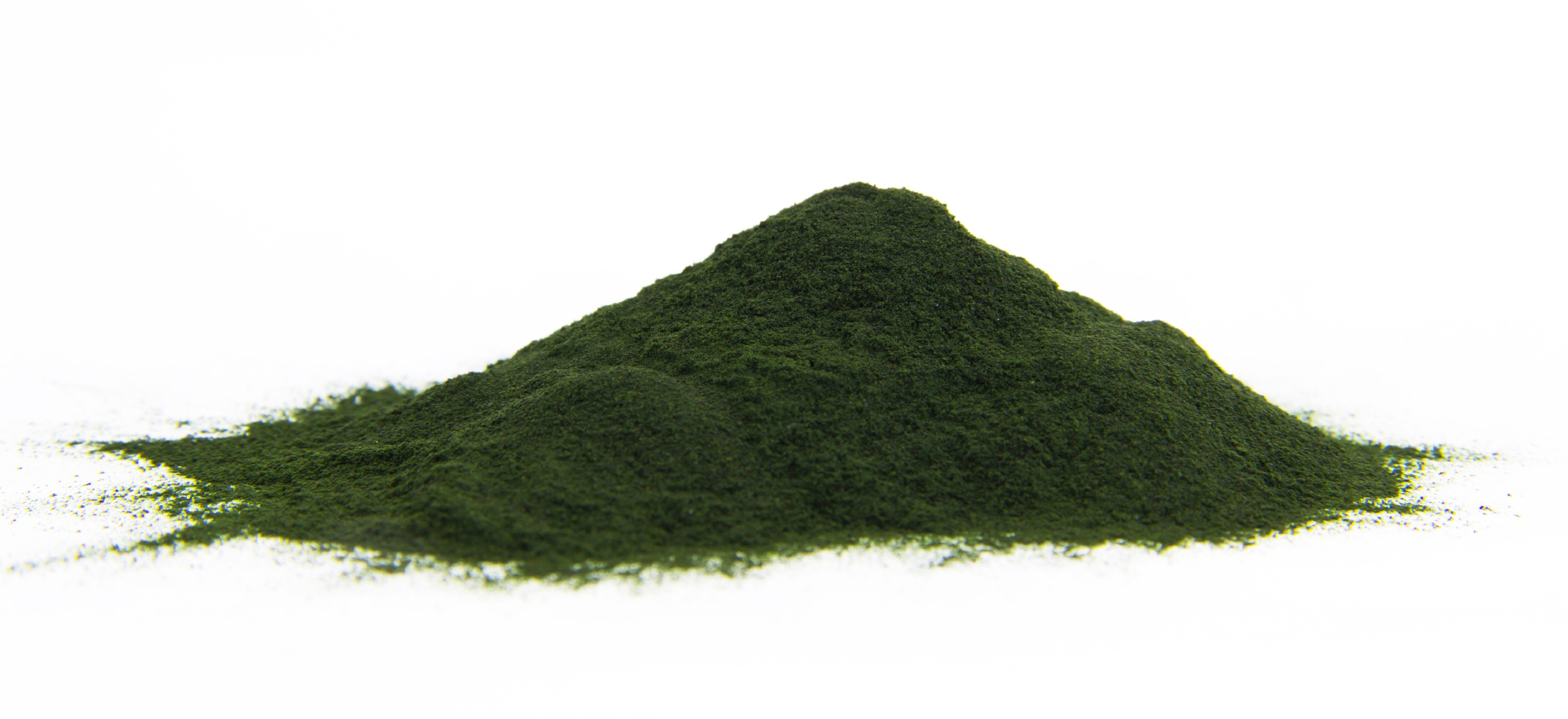spirulina_powder